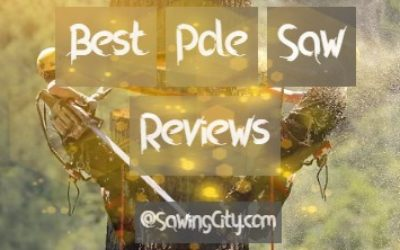 Best Pole Reviews and Guide